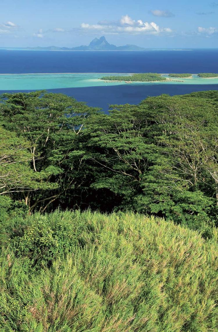 Sur les hauteurs de Tahaa, vue splendide sur Bora Bora ©Tim-Mckenna.com