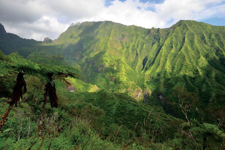 Montagnes de la côte est de Tahiti - © P. Bacchet