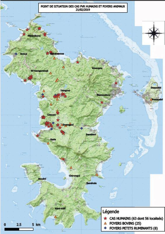 De novembre 2018 à février 2019, la Fièvre de la Vallée du Rift avait fait 63 cas humains à Mayotte ©Journal de Mayotte