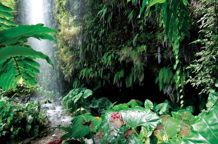 Entrée de la grotte de Maraa, à Paea