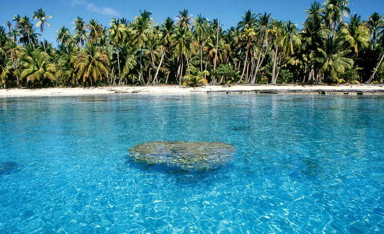 Jean-Pierre Marquant : le coureur d'atolls, lagon de Polynésie