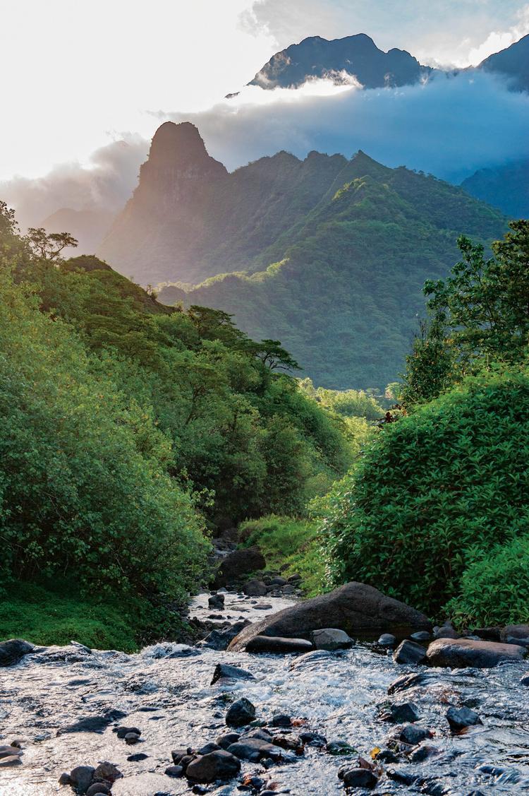 Torrent de la côte est de Tahiti - © D.Hazama