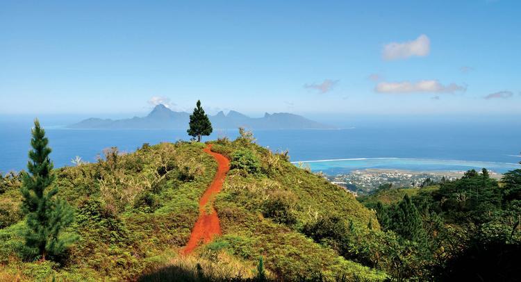 Sur la piste du Mont Marau, vue sur Punaauia et l'île de Moorea